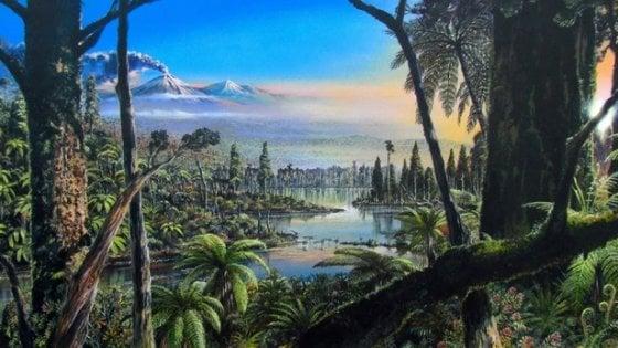 In Antartide una foresta pluviale di 90 milioni di anni