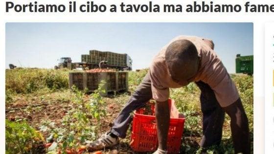 """Coronavirus, l'appello dei braccianti """"invisibili"""" agli italiani: """"Portiamo il cibo a tavola, ma abbiamo fame"""""""