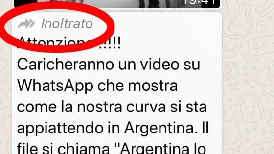 WhatsApp, basta catene di Sant'Antonio: solo un inoltro alla