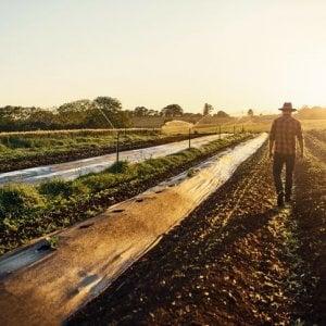 Assobio, pagamenti giusti e puntuali per gli operatori agricoli