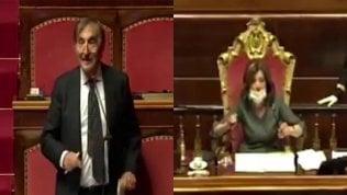 """Caos Senato, La Russa a Movimento 5S: """"Untore!"""""""