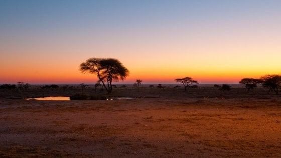 """Namibia. I nativi reclamano Etosha, il parco dei """"big five"""": """"È la nostra storia"""""""