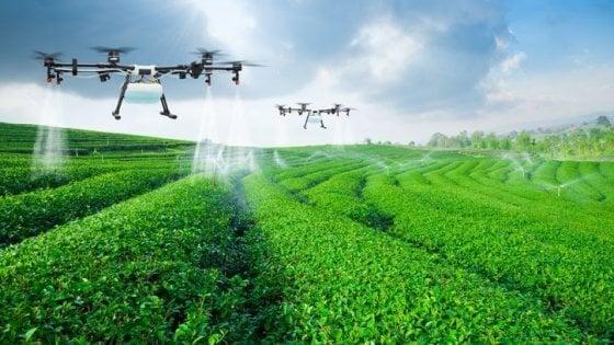 Agricoltura, Covid 19 spinge la tecnologia nei campi