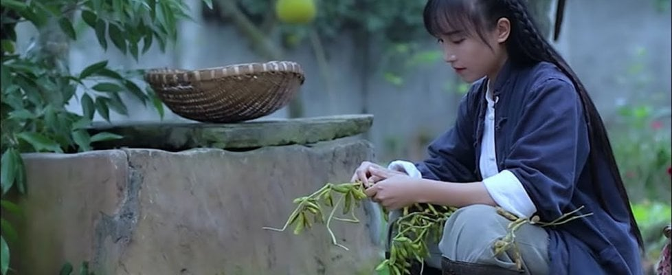 Dieci milioni di follower per la blogger cinese che racconta in video la sua vita contadina