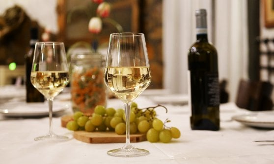 I grandi vini italiani: la Falanghina
