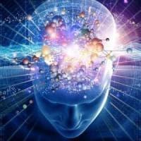Settimana del cervello, online test cognitivi ed esercizi per 'allenare' i neuroni