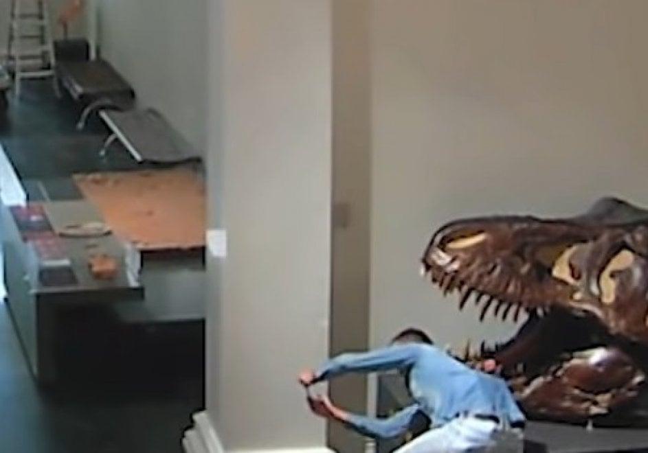 Australia, le immagini dell'irruzione al museo di preistoria
