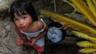 Sos Amazzonia: l'assalto genocida del presidente Bolsonaro