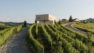 Tra le colline del Barolo la cultura del vino non si ferma