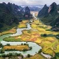Il riso più antico del mondo? In Uzbekistan