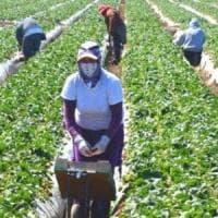 Lavoratori stranieri in nero valgono 15 miliardi di euro, un punto del Pil
