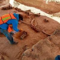 Messico, scoperto il cimitero dei mammut caduti nella trappola dei cacciatori