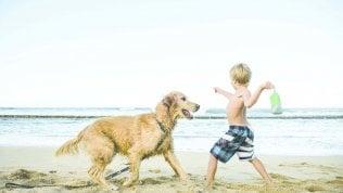 Disobbedienti e complicati: i cani adolescenti sono come i nostri ragazzi