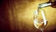 E il  New York Times celebra i vini bianchi italiani (sotto i 20 euro)