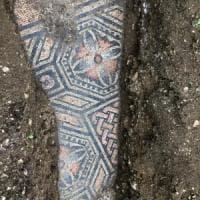 Venuta alla luce villa romana fra i filari che danno vita all'Amarone