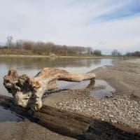 Siccità, crollano le portate del Po e dei fiumi del Nord Italia