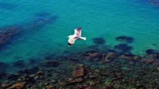 Sicilia: mare, misteri e fascino dell'isola delle meraviglie
