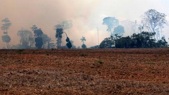 Perché l'Amazzonia continua a bruciare