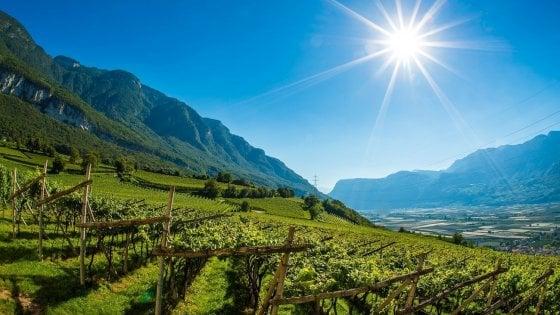 Caprai e Hofstätter, come vini e territori diversi si incontrano nel bicchiere