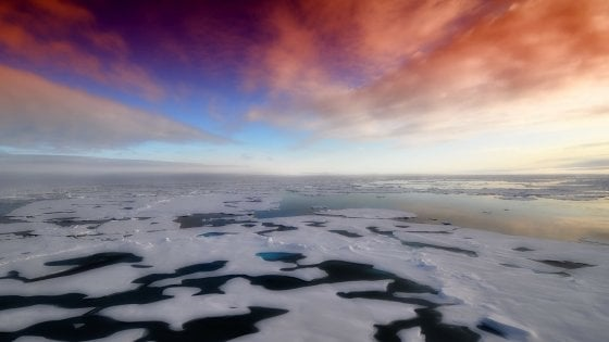 Antartide, i livelli di CO2 hanno trasformato la biodiversità 18.000 anni fa