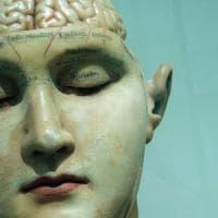 Cervello, lì dove nasce il senso di responsabilità
