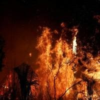 Brasile, l'Amazzonia brucia: è stato il giugno peggiore degli ultimi 13 anni