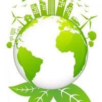 Sondaggio, l'Italia chiede una rivoluzione verde per la ripartenza dopo il Covid