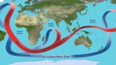 La Corrente del Golfo? E' come un frullatore nell'oceano
