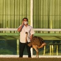 Coronavirus, quasi 60 mila nuovi casi negli Usa, il presidente brasiliano non ne può più...