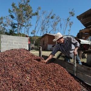 Honduras, il sostegno ai piccoli produttori di caffè: consegnati 5.600 kit igienici per lavorare in sicurezza.