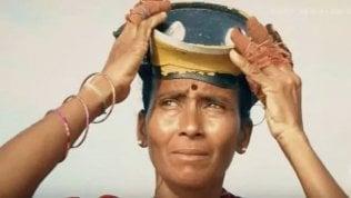 """La storia Le donne che raccolgono alghe: """"Il mare è cambiato"""""""