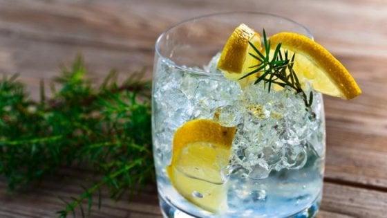 L'antologia del Gin: dal London Dry al Negroni, passando per la storia