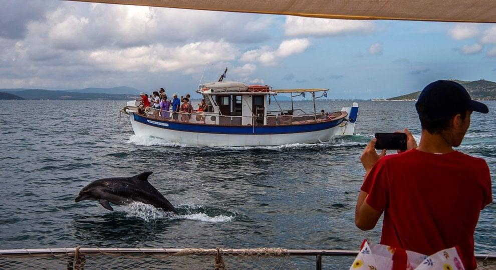 Delfini, pellicani, lentezza. Prevesa, l'altra Grecia -   ft
