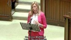 "Quando la deputata leghista diceva: ""I 600 euro sono un'elemosina"""