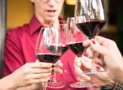 I grandi vini d'italia: il Teroldego Rotaliano