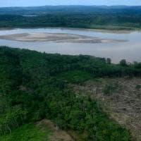 Amazon Day, ecco perché dobbiamo preservare la foresta pluviale