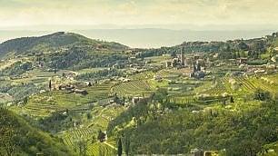 Nel Veronese, tra vini e risi
