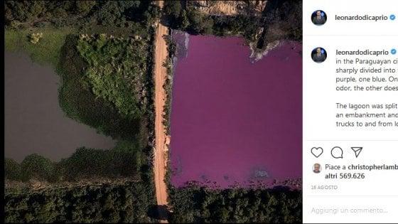 Paraguay, la laguna diventa viola: attori e modelle denunciano il disastro ambientale