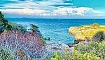 Giannutri. Scoprire l'isola gioiello tra natura, lentezza e storia