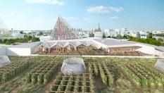 Parigi, una fattoria urbana sui tetti. Per ammirare la Tour Eiffel con lentezza