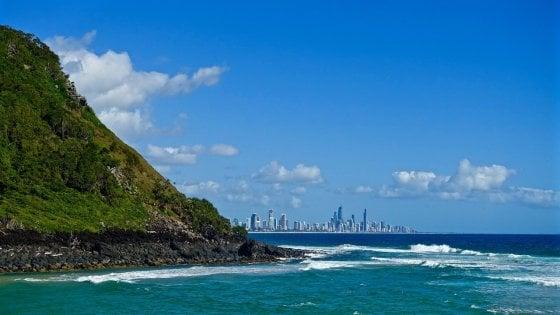 Australia, squalo bianco uccide un surfista nella Gold Coast: non accadeva da sessant'anni
