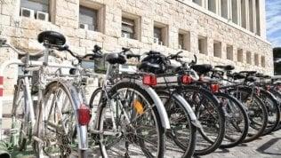 Boom biciclette: 2 milioni le vendite previste per il 2020
