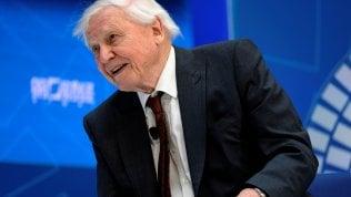 David Attenborough debutta su Instagram ed è subito record