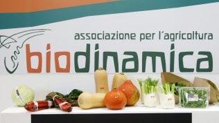 Alimentare, la ripartenza del mercato passa dal biologico