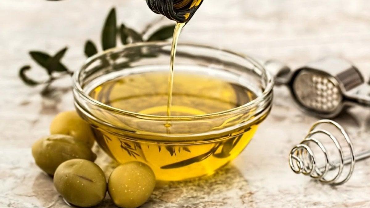 184102730 37ffeeb9 866e 4caf 89e2 5f08c4424300 - L'anno orribile dell'olio d'oliva italiano, produzione in calo del 26%