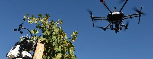 Sensori, dati open innovation l'agricoltura sempre più tech