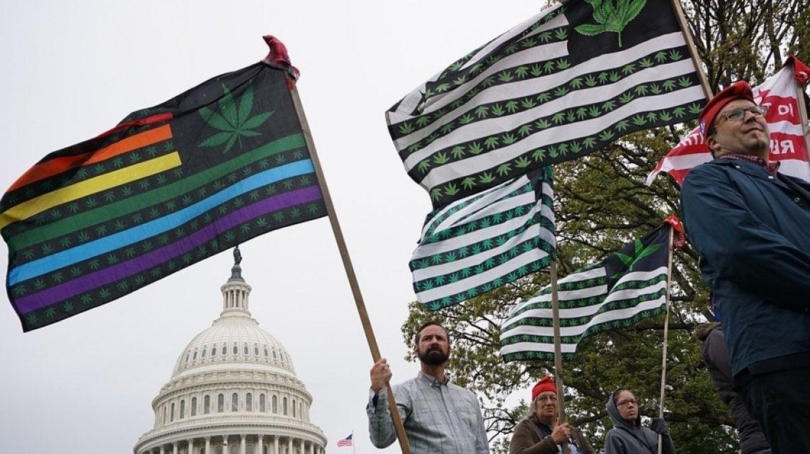 221006888 6247bd04 9992 4a54 87b2 cc76d12289ad - Lupi, droghe e aborto: gli altri voti del 3 novembre negli Usa