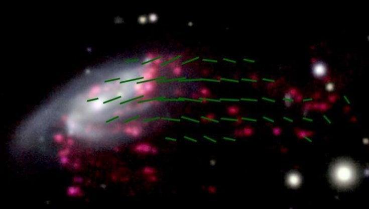 C'è una galassia a forma di medusa plasmata dai campi magnetici
