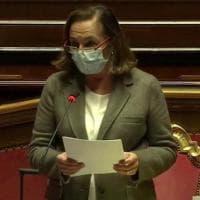 "Piazze in rivolta, Lamorgese: ""Studenti, disagiati ed extracomunitari nelle frange..."