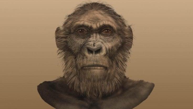 """Rinvenuto un teschio di due milioni di anni fa: è di un ominino, nostro vecchio """"cugino"""""""